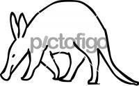 AardvarkFreehand Image