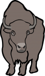American Bison Buffalo freehand drawings