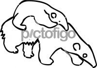 AnteaterFreehand Image