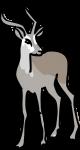 Antelope freehand drawings