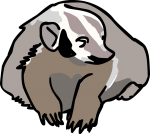 Badger freehand drawings