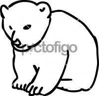 BearFreehand Image