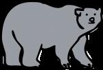 Bear freehand drawings