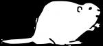 Beaver freehand drawings