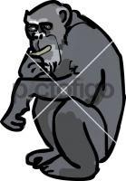 Chimpanzee  Freehand Image