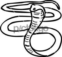 CobraFreehand Image