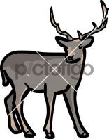 DeerFreehand Image