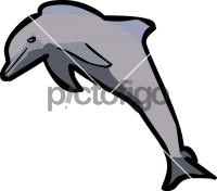 DolphinFreehand Image