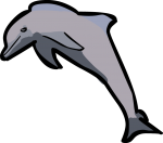 Dolphin freehand drawings