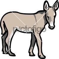 DonkeyFreehand Image