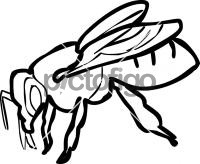 BeeFreehand Image