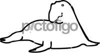 Elephant SealFreehand Image