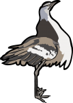 Denham Bustard freehand drawings