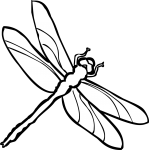 Dragonfly freehand drawings