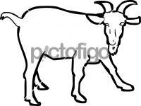 GoatFreehand Image