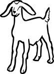 Goat freehand drawings