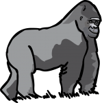 Gorilla freehand drawings