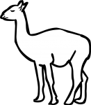 Guanaco freehand drawings
