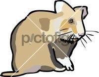 HamsterFreehand Image