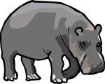 Hippopotamus freehand drawings