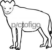 HyenaFreehand Image