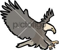 EagleFreehand Image