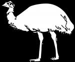 Emu freehand drawings