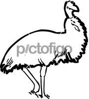 EmuFreehand Image
