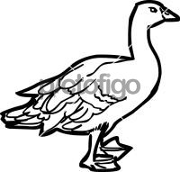 GooseFreehand Image
