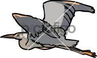 HeronFreehand Image