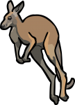 Kangaroo freehand drawings