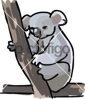KoalaFreehand Image
