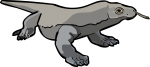 Komodo Dragon freehand drawings
