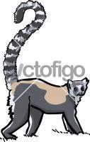 LemurFreehand Image