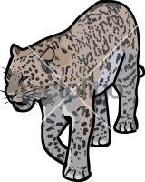 LeopardFreehand Image