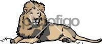 LionFreehand Image