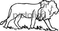 LionFreehand Image