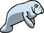 Manatee freehand drawings
