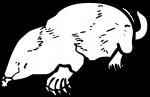 Mole freehand drawings