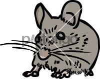 MouseFreehand Image