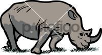 RhinocerosFreehand Image
