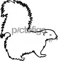 SkunkFreehand Image