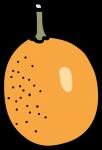 Kumquat freehand drawings