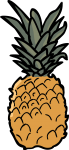 Pineapple freehand drawings