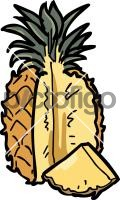 PineappleFreehand Image