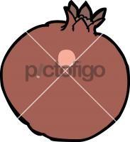 PomegranateFreehand Image