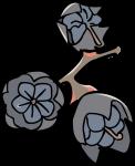 Salal berry