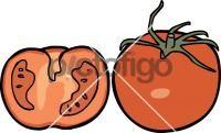 TomatoFreehand Image