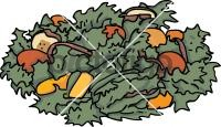 Garden SaladFreehand Image