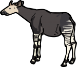 Okapi freehand drawings